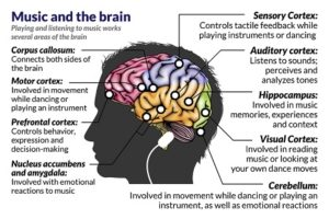 Clover Care Home Dementia Assisted Living Music Therapy Brain Activity