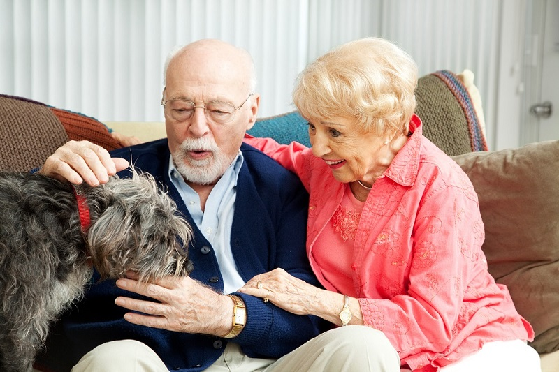 Clover-Care-Home-Senior-Memory-Care-In-Kansas-City-Offers-Pet-Therapy-blog