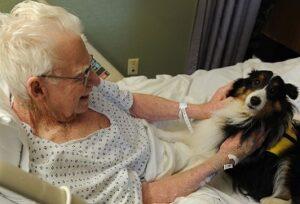 pets help improve seniors emotions